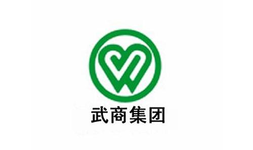 武商集团(武汉)股份有限公司---真冰溜冰场超低温冷水机组